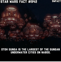 Memes, Star Wars, and Star: STAR WARS FACT #942  SWFACT  OTOH GUNGA IS THE LARGEST OF THE GUNGAN  UNDERWATER CITIES ON NABO0. What was your favorite thing from Episode I that was first introduced in the film?