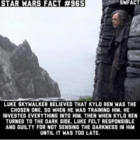 Kylo Ren, Luke Skywalker, and Mark Hamill: STAR WARS FACT #965  SWFACT  LUKE SKYWALKER BELIEVED THAT KYLO REN WAS THE  CHOSEN ONE, SO WHEN HE WAS TRAINING HIM, HE  INVESTED EVERYTHING INTO HIM. THEN WHEN KYLO REN  TURNED TO THE DARK SIDE, LUKE FELT RESPONSIBLE  AND GUILTY FOR NOT SENSING THE DARKNESS IN HIM  UNTIL IT WAS TOO LATE Today has been a great day for Star Wars fans. I'm so hyped for Episode VIII now! Source: Mark Hamill (Entertainment Weekly)