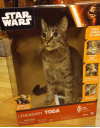 Like this picture you will - CAT Planet: STAR  WARS  TRAIN TO  BE A JEDI  LEGENDARY YODA  WARNING:  YODA  COMES  TO LIFE  360  MOVEMENT  TRANs You  USE THE FORCE  LOLPIX com Like this picture you will - CAT Planet