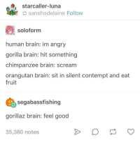 Scream, Brain, and Good: starcaller-luna  sanshodelaine Follow  soloform  human brain: im angry  gorilla brain: hit something  chimpanzee brain: scream  orangutan brain: sit in silent contempt and eat  fruit  segabassfishing  gorillaz brain: feel good  35,380 notes Primate Brain