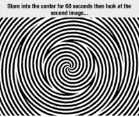 Wow, Image, and You: Stare into the center for 60 seconds then look at the  second image.. <p>Wow, You'll Probably Enjoy This.</p>