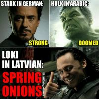 Batman, Google, and Memes: STARKIN GERMAN  HULKIN ARABIC  STRONG  DOOMED  LOKI  IN LATVIAN2  SPRING  ONIONS This is true! (I'm Latvian) 😂 Use google translate if you want to check 😂😂😂👌 ~Quicksilver • Creator-credits @janisjulijs Original photo: ▪pinterest.com • Follow @daily.memez Tag People Like & Comment For More! • MCU hulk movie batman ironman loki latvia like4follow follow4follow hulkbuster deadpool spidermanhomecoming wintersoldier latvian civilwar deutsch ageofultron agentcoulson deadpool arabic marvel civilwar stark marvelstudios german dormammu wintersoldier shield comics