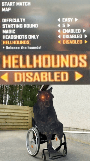 Difficulty: START MATCH  MAP  EASY  S  DIFFICULTY  STARTING ROUND  MAGIC  HEADSHOTS ONLY  HELLHOUNDS  ENABLED  DISABLED  DISABLED  Release the hounds!  HELLHOUNDS  DISABLED