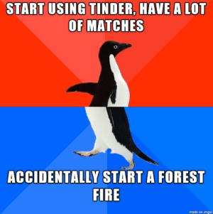 Fire, Tinder, and Imgur: START USING TINDER, HAVE A LOT  OF MATCHES  ACCIDENTALLY START A FOREST  FIRE  made on imgur Oops