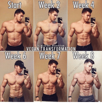 Clothes, Facebook, and Gym: Start  Week Week 4  IG: @LEGION S PRODUCTION  VEGAN TRANSFORMATION  Week 6  Week 7 Week 8 🔥😳8 WEEK TRANSFORMATION! Founder 👉: @king_khieu. Vegan 🍃 Gainz. Thoughts? 🤔 What do you guys think? COMMENT BELOW! Athlete: @nimai_delgado. TAG SOMEONE who needs to lift! _________________ Looking for unique gym clothes? Use our 10% discount code: LEGIONS10🔑 on Ape Athletics 🦍 fitness apparel! The link is in our 👆 bio! _________________ Principal 🔥 account: @fitness_legions. Facebook ✅ page: Legions Production. @legions_production🏆🏆🏆.
