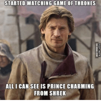 😃: STARTED WATCHING GAME OF THRONES  ALL I CAN SEE IS PRINCE CHARMING  FROM SHREK 😃