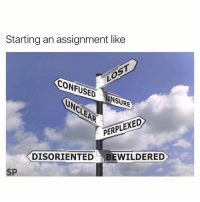 Confused, Lost, and Assignment: Starting an assignment like  LOST  CONFUSED  UNSURE  PERPLEXED  DISORIENTED  BEWILDERED  SP Every assignment 😅
