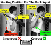 Adidas, Crazy, and Gym: Starting Position For The Back Squat  Engaged  Upper Back  Relaxed  Upper Back  Neutral  Wrist  over Extended  Wrist  Elbows Pulled  Back  Elbows Under Bar  Correct  M  Incorrect  SQUAT  UNIVERSITY HOW TO SET UP FOR A PERFECT BACK SQUAT. No one squats big weight with a sloppy set up. The position of your elbows changes everything. Let me explain 👇🏼 . Incorrect set up: the athlete to the left has a very relaxed hold on the barbell. When the elbows are pulled under the bar during the squat it decreases the amount of tension that can be held in the upper back. If you try to squat big weight with this poor set-up it transfers the force of holding the bar to other areas (the wrist & elbows & smaller structures of the spine). ❌ . Proper set up: when the elbows are pulled back in line with the back, it instantly engages the mid back. Your shoulder blades (scapulae) are pulled together creating a firm foundation for the bar to rest. In this set-up, the mid back musculature holds the bar firmly, keeping your elbows, wrists and back safe. ✅ . TAKE AWAY: Don't go crazy & pull the elbows TOO FAR back, but squeeze your shoulder blades together & bring your elbows back & in towards your body (in alignment with the outline of your back if viewed from the side). No one walks out & squats tremendous weight with a weak set up. Set yourself up for a good quality squat from the start! 🏋🏽 . Shout out to @startingstrength for the background photo example for today's post. _______________________________ Squat University is the ultimate guide to realizing the strength to which the body is capable of. The information within these pages are provided to empower you to become a master of your physical body. Through these teachings you will find what is required in order to rid yourself of pain, decrease risk for injury, and improve your strength and athletic performance. ________________________________ Squat SquatUniversity Powerlifting weightlifting crossfit training