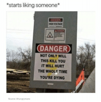 Memes, 🤖, and Voltage: *starts liking someone  DANGER  HIGH VOLTAGE  A DANGER  DANGER  NOT ONLY WILL  THIS KILL YOU  IT WILL HURT  THE WHOLE TIME  YOU'RE DYING  Source: lihungrymane where is the lie?