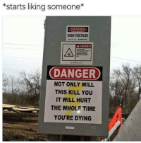 Dank Memes, Voltage, and High Voltage: *starts liking someone  DANGER  HIGH VOLTAGE  A DANGER  DANGER  NOT ONLY WILL  THIS KILL YOU  IT WILL HURT  THE WHOLE TIME  YOU'RE DYING Ugh