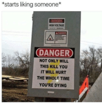 Dank Memes, Voltage, and High Voltage: *starts liking someone  DANGER  HIGH VOLTAGE  A DANGER  DANGER  NOT ONLY WILL  THIS KILL YOU  IT WILL HURT  THE WHOLE TIME  YOU'RE DYING truth Amphetameme pt. III