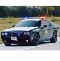 Texas State Troopers don't fuck around Fuckaroundandfindout SRT SRT8 Dodge Challenger DodgeChallenger DodgeChallengerSRT TBL ThinBlueLine Police PoliceCar CopCar Texas TexasStateTrooper Backtheblue BlueFamily ibleedblue PoliceLivesMatter: STATE TEMP Texas State Troopers don't fuck around Fuckaroundandfindout SRT SRT8 Dodge Challenger DodgeChallenger DodgeChallengerSRT TBL ThinBlueLine Police PoliceCar CopCar Texas TexasStateTrooper Backtheblue BlueFamily ibleedblue PoliceLivesMatter