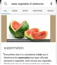 """Dank, Facebook, and Funny: state vegetable of oklahoma  ALL NEWS MAPS SHOPPING IMAGES  www.medicalnewstoday.com  watermelon  """"Everywhere else it is considered a fruit, but in  Oklahoma the watermelon has been officially  declared a vegetable. And not just any vegetable, I have so many questions . . . . funny lol 😂 meme memes dank cleanmemes cleanmeme tumblr text textpost textposts facebook twitter pun puns comics comic"""