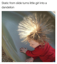 Funny, Personal, and Next: Static from slide turns little girl into a  dandelion The next person who touches her is going to explode into a million pieces from the electric shock