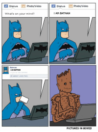 Batman, Boxing, and Memes: Status  Photo/Video  Status  Photo/Video  I AM BATMAN  What's on your mind?  Batman  IAM BATMAN  GROOT LIKES THIS  PICTURES IN BOXES