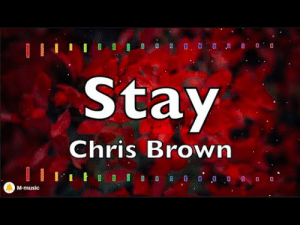 lol-coaster:  Chris Brown - Stay (Lyric video): Stay  Chris Brown  M-music lol-coaster:  Chris Brown - Stay (Lyric video)