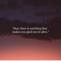 """Alive, You, and Stay: Stay close to anything that  makes you glad you're alive."""""""