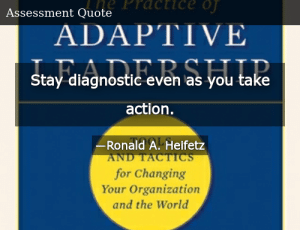 SIZZLE: Stay diagnostic even as you take action.