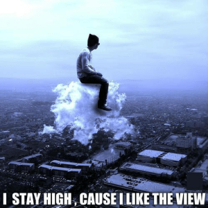 The View, Don, and All: STAY HIGH, CAUSE ILIKE THE VIEW Dont we all