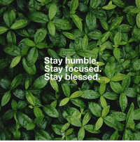 Memes, 🤖, and Humbleness: Stay humble  Stay focuse  Stay blessed. TheGoodQuote