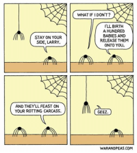 Anger Management Therapy Has Not Been Paying Off. comic webcomic warandpeas spider cartoon comics anger humor funny lol comedy yonkoma comicstrip friendship friendshipgoals: STAY ON YOUR  SIDE, LARRY.  AND THEY LL FEAST ON  YOUR ROTTING CARCASS.  WHAT IF IDON'T?  LL BIRTH  A HUNDRED  BABIES AND  RELEASE THEM  ONTO YOU  GEEZ  WARANDPEAS.COM Anger Management Therapy Has Not Been Paying Off. comic webcomic warandpeas spider cartoon comics anger humor funny lol comedy yonkoma comicstrip friendship friendshipgoals