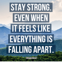 Memes, 🤖, and Stay Strong: STAY STRONG  EVEN WHEN  IT FEELS LIKE  EVERYTHING IS  FALLING APART <3 Inspower.co  .