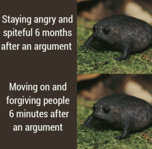 https://t.co/SrJaw4Wn8Y: Staying angry and  spiteful 6 months  after an argument  Moving on and  forgiving people  6 minutes after  an argument https://t.co/SrJaw4Wn8Y