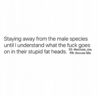 Memes, Fuck, and Girl: Staying away from the male species  until I understand what the fuck goes  on in their stupid fat heads. IG: @scouse Ma.  ma,  FB: Scouse Same girl @scouse_ma @scouse_ma @scouse_ma