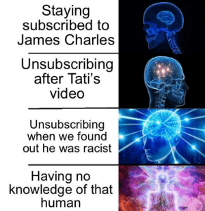 Who????: Staying  subscribed to  James Charles  Unsubscribing  after Tati's  video  Unsubscribing  when we found  out he was racist  Having no  knowledge of that  human Who????