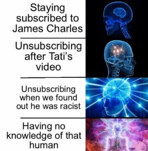 Jamiesy Charles DUNGOUF: Staying  subscribed to  James Charles  Unsubscribing  after Tati's  video  Unsubscribing  when we found  out he was racist  Having no  knowledge of that  human Jamiesy Charles DUNGOUF