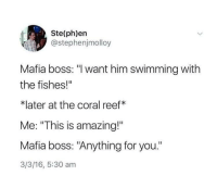 "Good, Amazing, and 16.5: Ste(ph)en  @stephenjmolloy  Mafia boss: ""l want him swimming with  the fishes!""  *later at the coral reef*  Me: ""This is amazing!""  Mafia boss: ""Anything for you.  3/3/16, 5:30 am <p>Good mafia boss!</p>"