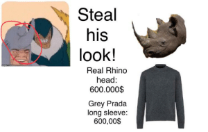 Head, Grey, and Prada: Steal  his  look!  Real Rhino  head:  600.000$  Grey Prada  long sleeve:  600,00$ I had to research like 20 min for only one result for the rhino head!!! AND, don't buy one of them!!! That's illegal.