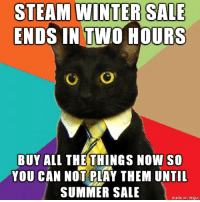 Steam Winter Sale: STEAM WINTER SALE  ENDS IN TWO HOURS  O /O  BUY ALL THE THINGS NOW so  YOU CAN NOT PLAY THEM UNTIL  SUMMER SALE  made on imgur