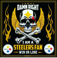 Steelers  DAMN RIGHT  I AM A  STEELERS FAN  Steelers  WIN OR LOSE
