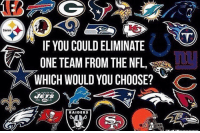 Memes, Raiders, and Steelers: Steelers  IF YOU COULDELIMINATE  ONE TEAM FROM THE NFL  WHICH WOULD YOU CHOOSE?  C  RAIDERS You're commissioner of the NFL today. What team do you get rid of?