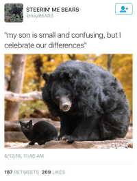"""Bears, Son, and Likes: STEERIN' ME BEARS  @hayBEARS  """"my son is small and confusing, but I  celebrate our differences""""  6/12/16, 11:46 AM  187 RETWEETS 269 LIKES"""