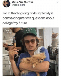 College, Family, and Finn: Stella Atop the Tree  @stella_kent  Me at thanksgiving while my family is  bombarding me with questions about  college/my future  Finn  11m ago