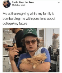 College, Family, and Finn: Stella Atop the Tree  @stella_kent  Me at thanksgiving while my family is  bombarding me with questions about  college/my future  Finn  11m ago Omg 😭😩💀
