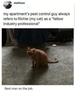 "https://t.co/aRqW7IE4N4: stellmon  my apartment's pest control guy always  refers to Richie (my cat) as a ""fellow  industry professional""  Best man on the job. https://t.co/aRqW7IE4N4"