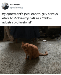 """Tumblr, Control, and Best: stellmon  @stellmoney  my apartment's pest control guy always  refers to Richie (my cat) as a """"fellow  industry professional"""" babyanimalgifs:  Best man on the job."""
