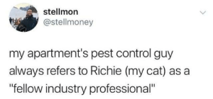 "from twitter.com/stellmoney: stellmon  @stellmoney  my apartment's pest control guy  always refers to Richie (my cat) as a  ""fellow industry professional"" from twitter.com/stellmoney"