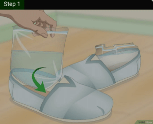 Aquarium, Common, and How To: Step 1  wiki How How to set up your dream aquarium, using these 2 common household items.