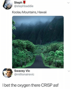 Dank, Hawaii, and Oxygen: Steph  @stephbaddie  Koolau Mountains, Hawaii  Swavey Vic  @millionairevic  l bet the oxygen there CRISP asf I can almost taste it.