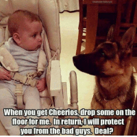 Bui: Stephanie Bui agist  When you get Cheerios drop some on the  Moorfor me. In return Will protect  you from the bad guys. Deal?