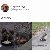 Memes, Stephen, and 🤖: stephen ll-//  @StephenbMata  A story Praying for her