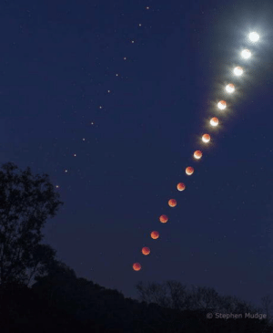 Omg, Stephen, and Tumblr: Stephen Mudge omg-humor:The lunar eclipse and mars time lapse viewed from Brisbane, photographed by Stephen Mudge
