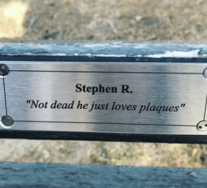 """Found in Central Park. Stephen, if you're out there, keep doing you.: Stephen R.  """"Not dead he just loves plaques"""" Found in Central Park. Stephen, if you're out there, keep doing you."""