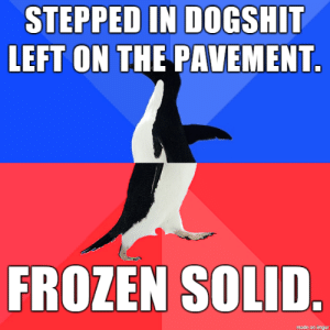 Frozen, Winter, and Good: STEPPED IN DOGSHIT  LEFT ON THE PAVEMENT  FROZEN SOLID Finally something good about winter weather.