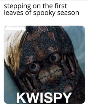 Fastest kwisb in town by abethebabe44 MORE MEMES: stepping on the first  leaves of spooky season  KWISPY Fastest kwisb in town by abethebabe44 MORE MEMES