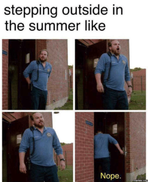Memes, Reddit, and Summer: stepping outside in  the summer like  Nope.  memes.com Oh hell no...